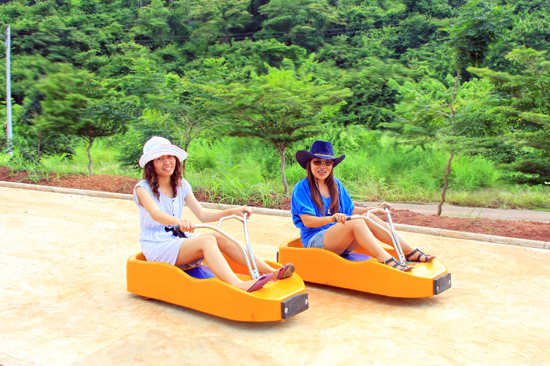 MOUNTIAN LUGE
