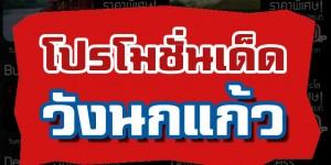 โปรโมชั่นเด็ดวังนกแก้ว พาร์ค วิว จ.กาญจนบุรี